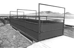 Livestock Scale Cardinal LSE